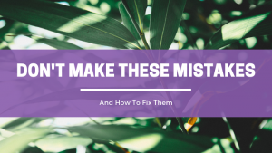 Don't make these mistakes when building your health coach practice