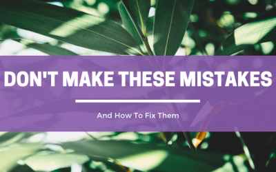 3 Mistakes Not To Make When Building Your Health Coach Practice